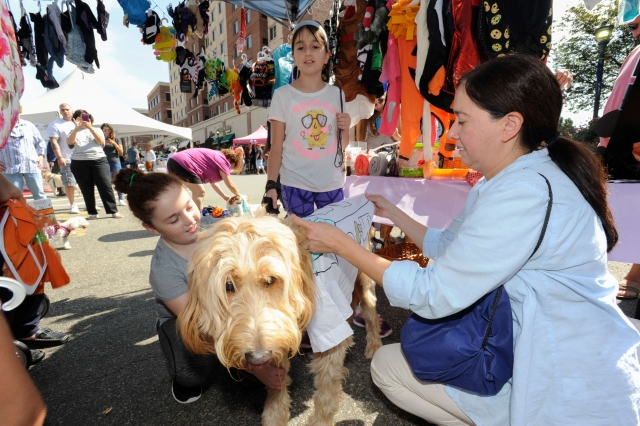 City Place Woofstock